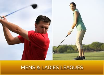Mens, Ladies Leagues