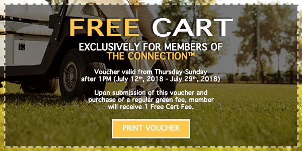 wv-free-carts-voucher-2018